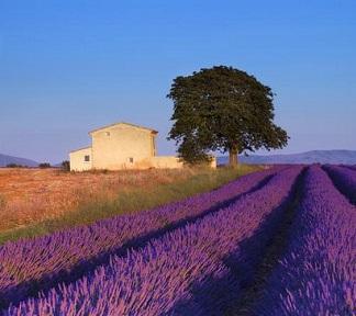 Bezienswaardigheden in de Provence