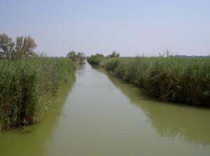 Een kanaal in de Camargue