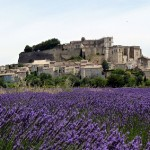 ..tot aan het prachtig gelegen Grignan in de Rhône-Alpes, midden in de lavendelvelden. In zuid-Frankrijk zijn genoeg leuke steden en dorpen om te bezoeken!