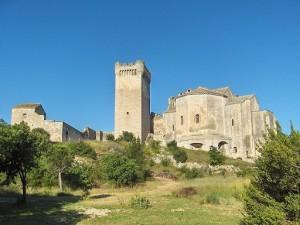 De abdij van Montmajour