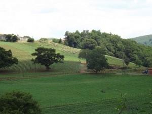 Frans Baskenland