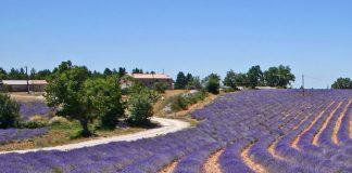 bezienswaardigheden in Bouches-du-Rhône