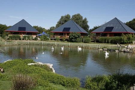 vakantiepark Cerza Safari Lodge