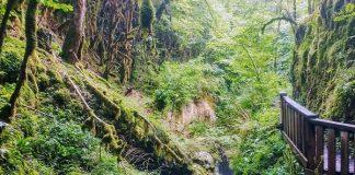 Gorges de l'Abîme